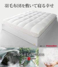 ホワイトダック成熟羽毛仕様ベッドパッドプラス