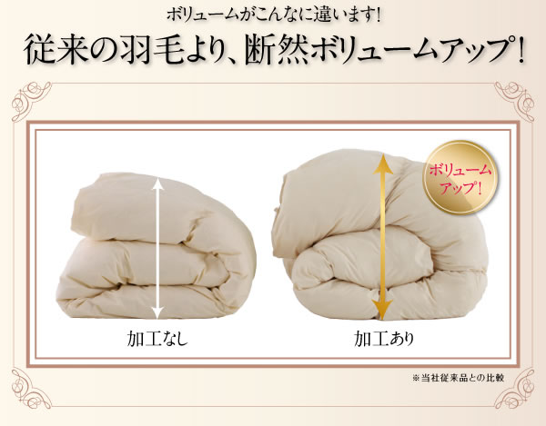 日本製防カビ消臭 プレミアムゴールドラベル 羽毛掛布団 【Noiva】ノイヴァの激安通販