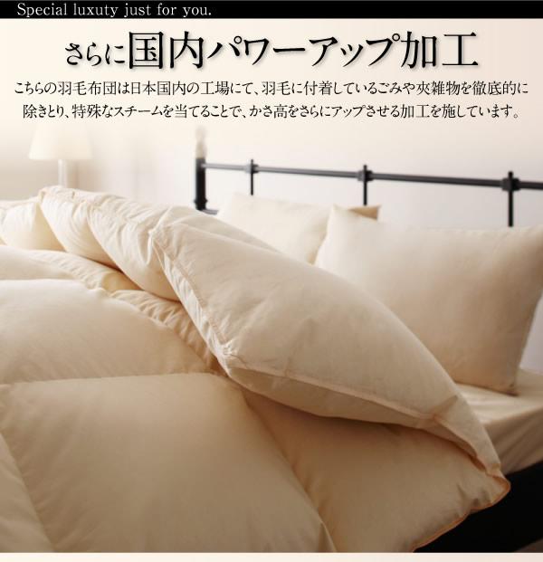 日本製防カビ消臭 プレミアムゴールドラベルボリュームタイプ 羽毛布団8点セット 【Noiva】ノイヴァの激安通販