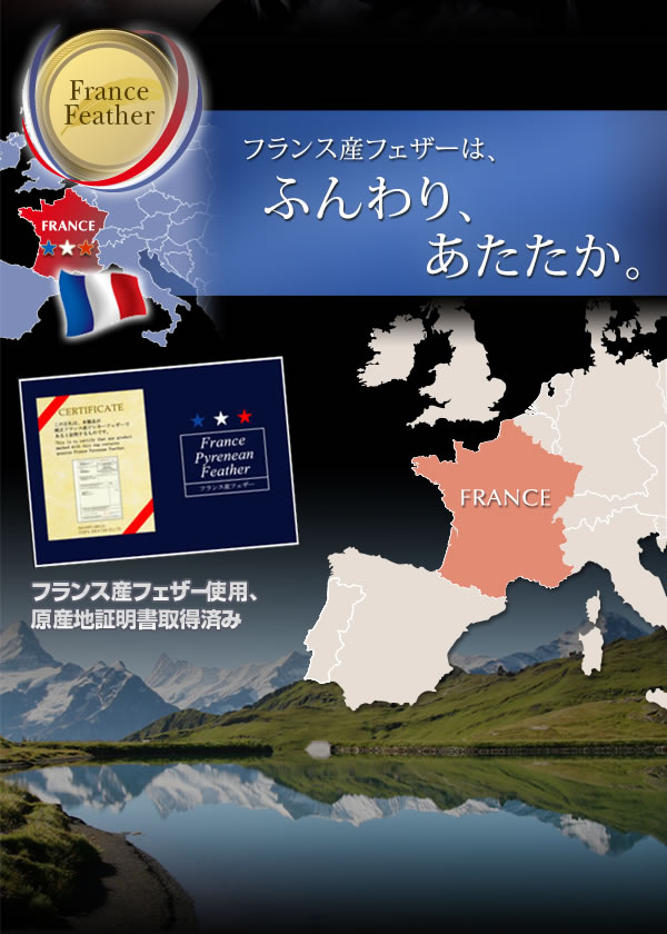 フランスフェザー100% 羽根布団8点セット ベッドタイプ 【Plume】 激安通販