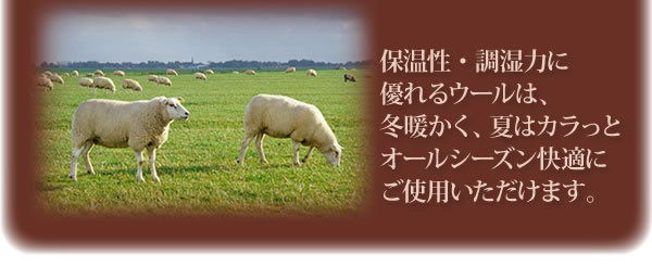 防ダニ・抗菌防臭 国産羊毛混硬わた敷布団(シングル) 説明4